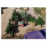 Pile of Christmas Trees