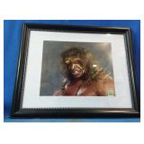 WWE Ultimate Warrior framed signed photograph,