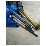 Baseball bats and bag