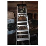 step ladders(2)