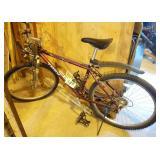 Mountain Trek Bicycle