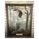 Framed  & matted 1993 enhanced Eagle print by