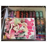Adult Japanese anime manga comics - approx. 15