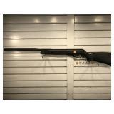Gamo Big Cat Whisper Pellet Rifle - working