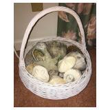 Large Basket of Seashells