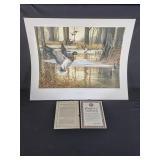 """Beaver Dam Mallards"" by Ralph McDonald 462/800"