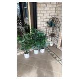 Decorative Shelf, Watering Can, Faux Plants