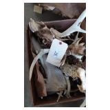 Lot of Deer Heads & Antlers