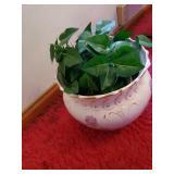Flower Pot W/ Vines