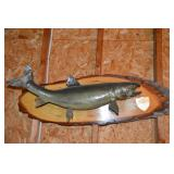 Canadian Lake Trout
