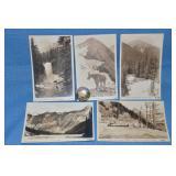 Glacier NP postcards & pin