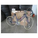 ALLURE 10 SPEED MAGNA BICYCLE