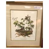 "Framed Print, ""White Throated Sparrow"" by"