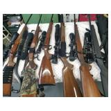 Firearms - Rifles and Shotguns