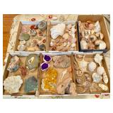 Gems, Geodes, Minerals, Fossils and Rare Shells