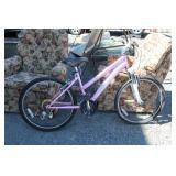 Schwinn Shumano Girls Bike