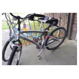 Trek Cruiser/Plantation Bike