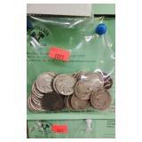 +Lot  Asst Buffalo Nickels (no dates)