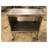 """36"""" Stainless cabinet on wheels"""