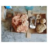 Geodes and Other Rocks