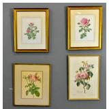 Group of 4 floral prints