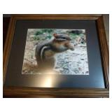 Chipmunk picture, extension cord, 2 TV trays and