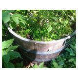 half wine barrell planter (by windmill)