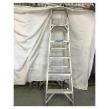 Werner six-foot ladder, Aluminum