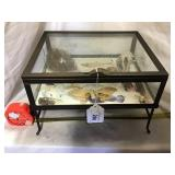 Display Case With Bird Nest And Butterfly