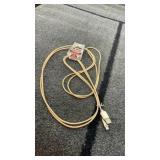 10ft I phone cord