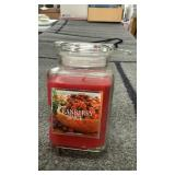 Raspberry spice candle