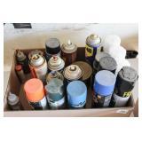 Cans of paint, rustoleum, wd-40