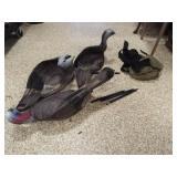 Foam Birds, with bag (3)