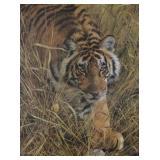 """Tall Grass Tiger"""