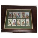 Framed Tobacco Cards Wills