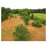 1845 Swor Still Rd. Buchanan TN 38222 Land Auction