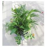 Assorted Indoor Large Planter