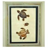 GEORGE EDWARDS HAND COLORED TURTLE ENGRAVING