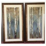 807 - PAIR OF FRAMED BIRCH TREES ART