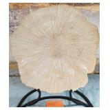 11 - LARGE GLASS LIKE SHELL ON STAND