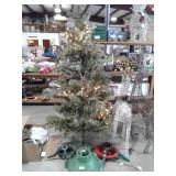 Christmas Tree & Stands