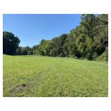 House & 65 +/- Acres at Absolute Online Auction