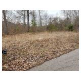 Prime Building Lot - Woods Bend Subdivision at Wood Creek Lake at Absolute Online Auction