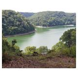 SOLD - 57 Lots Near Lake Cumberland at Absolute Online Auction