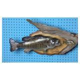 Feeding Smallmouth Bass/Fish Taxidermy Mount