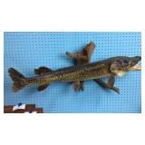 Northern Pike Taxidermy Wall Mount