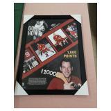 Gordie Howe Mr. Hockey picture