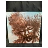 Jimi Hendrix The Cry Of Love LP