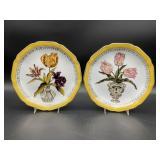 Pair of Wildwood Floral Plates