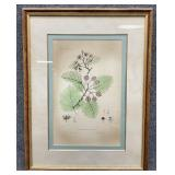 Silva of North America Floral Art Print